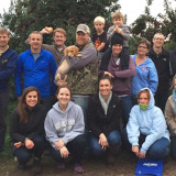 apple picking, progressive ae, holiday 2015