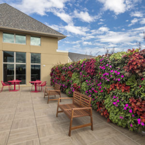 Waterford Place Sunset Senior Communities flower wall